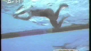 バルセロナオリンピック_競泳女子200m平泳ぎ決勝