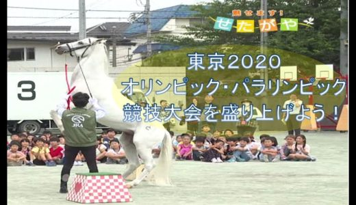 東京2020オリンピック・パラリンピック競技大会を盛り上げよう!