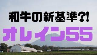 大山望ありがとう❤️【食レポ】和牛のオリンピック?!【オレイン55】