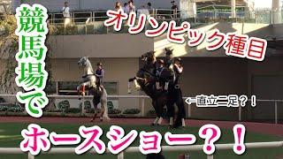 【オリンピック種目】競馬場で行われたホースショーを見てきた!(アンダルシアンホースショー)