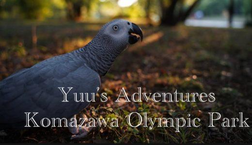 【Yuu's adventures】Komazawa Olympic Park  駒沢オリンピック公園